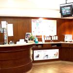 arredamento.bar.sabbatucci.falegnameria (4)